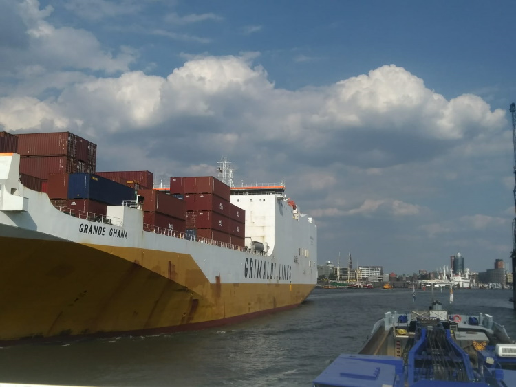 Project Hamburg-6